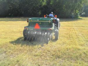 Planting Alfalfa
