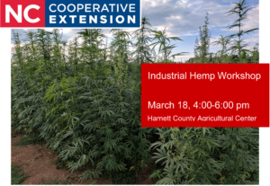 Cover photo for Industrial Hemp Workshop