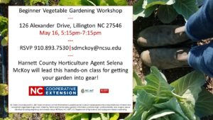 Cover photo for Upcoming Vegetable Gardening Workshops
