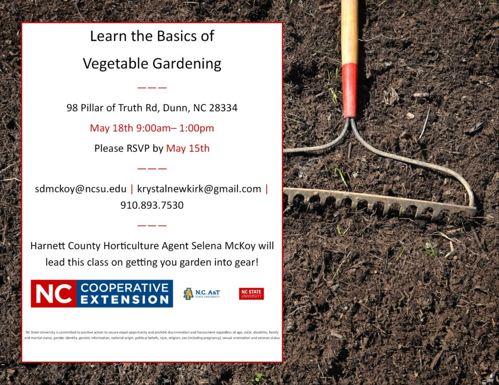 Learn the Basics of Vegetable Gardening flyer image