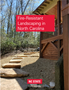 Example of fire-resistant landscaping